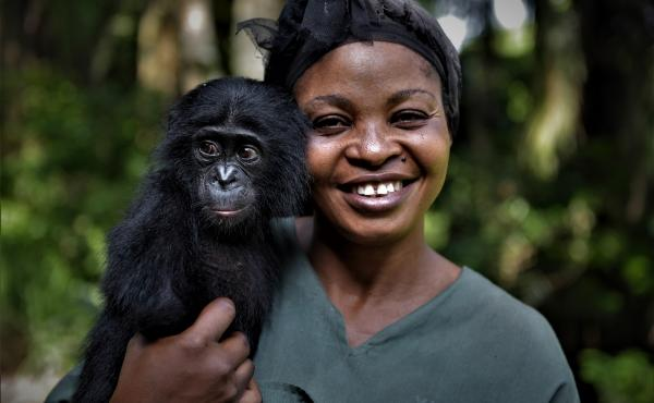 "Yvonne Vela Tona, one of the ""mamas"" at the sanctuary, looks after the young bonobo Esake."