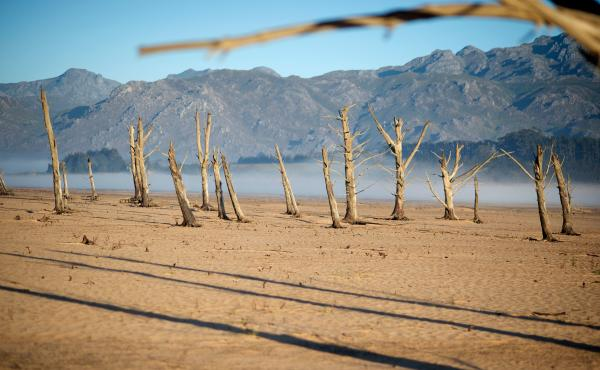The Theewaterskloof Dam is at just 13 percent capacity and is full of sand and dried tree trunks. About 85 miles north of Cape Town, the dam supplies both city and local farmers.