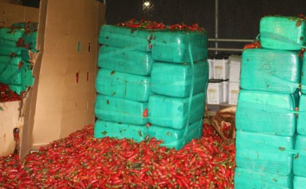 U.S. officers found nearly four tons of marijuana in a shipment of peppers in San Diego.