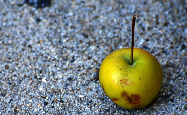 Tiny apple on sidewalk