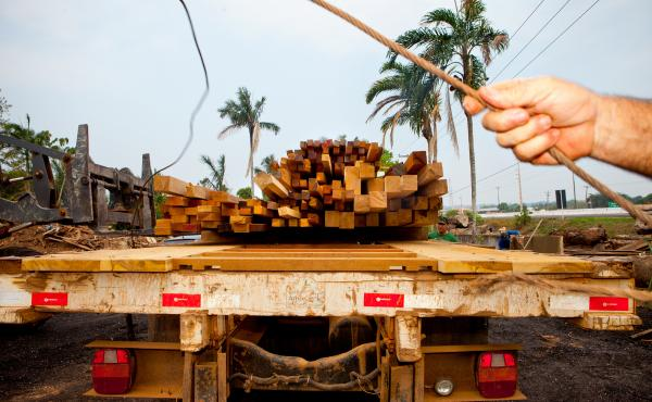 An NPR team joined Brazil's environmental police, the Ministry of Defense and other government enforcement agencies as they carried out a joint operation in the Jacunda National Forest in western Brazil. They seized timber that had been cut down by illega