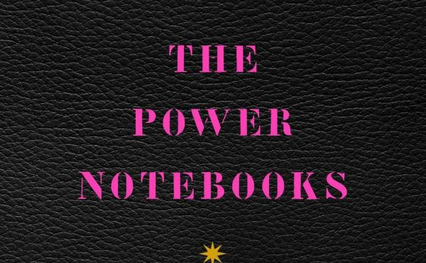 The Power Notebooks, by Katie Roiphe