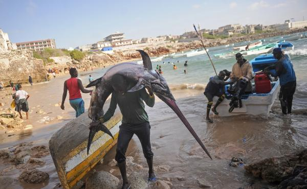 """A Somali fisherman carries a fish to the market near the port in Mogadishu. One of the U.N. Sustainable Development Goals calls for the world to """"conserve and sustainably use the oceans, seas and marine resources for sustainable development."""""""