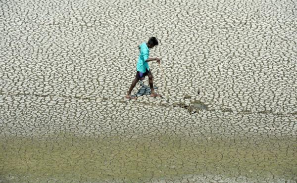 An Indian youth scouts for mud crabs and snakehead fish on the parched bed of Chembarambakkam Lake on the outskirts of Chennai.