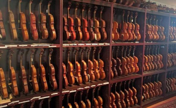 Just part of David Bromberg's collection of more than 250 American violins, crafted by nearly as many makers.