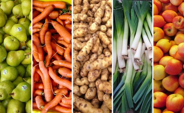 Not so ugly, eh? Supposedly imperfect produce rescued and reclaimed for consumption by Bon Appetit and Better Harvests.