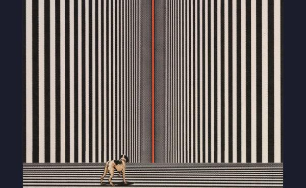 This Thing Between Us, by Gus Moreno