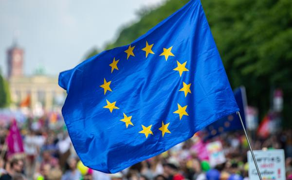 "A protester waves the European Union flag during the pro-Europe demonstration ""One Europe for All: Your voice against nationalism,"" a week before Sunday's European elections in Berlin, on May 19."