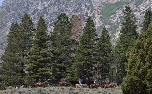 Horseback riders head down a trail near June Lake, Calif. As post-pandemic travel increases, people are flocking to outdoor activities and rural areas.