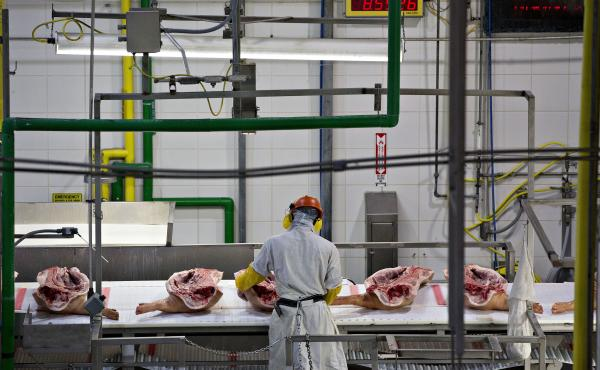 An employee handles sides of pork on a conveyor at a Smithfield Foods Inc. pork processing facility in Milan, Mo.