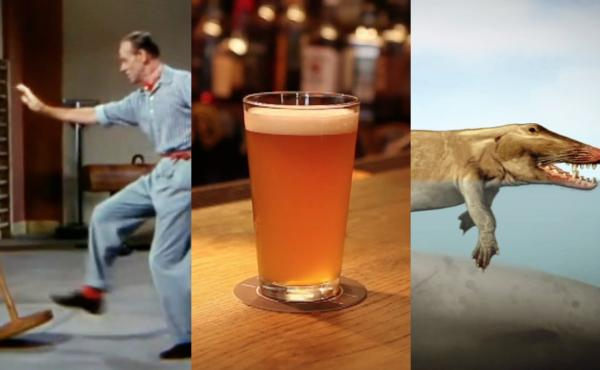 "A collection of stills from the Skunk Bear video ""Life in a Beer."""
