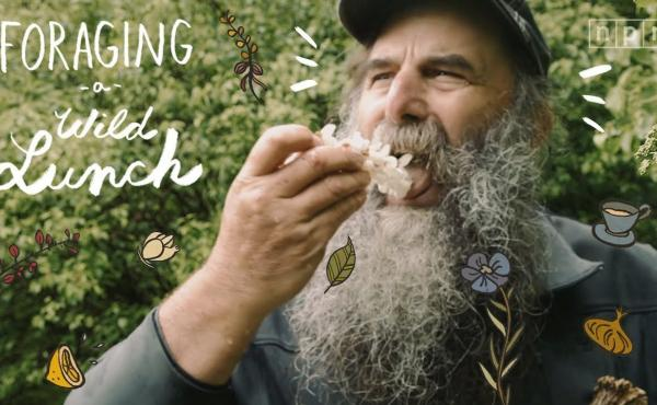 A wildly edible adventure into foraging with masters in the field.