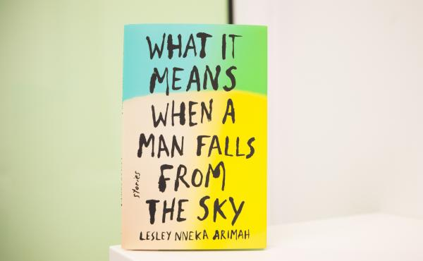 What it Means When a Man Falls From the Sky by Leslie Nneka Arimah