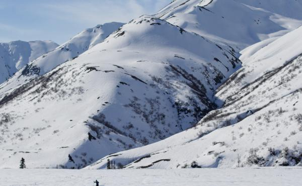 Sam Sterling skis over a crusty layer of snow in the mountains off the Denali Highway in Interior Alaska this month.