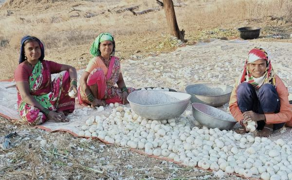 Field hockey star Sarita Bhise (right) with her mother (far left) and maternal aunt, cleaning onions they've harvested on the family farm.