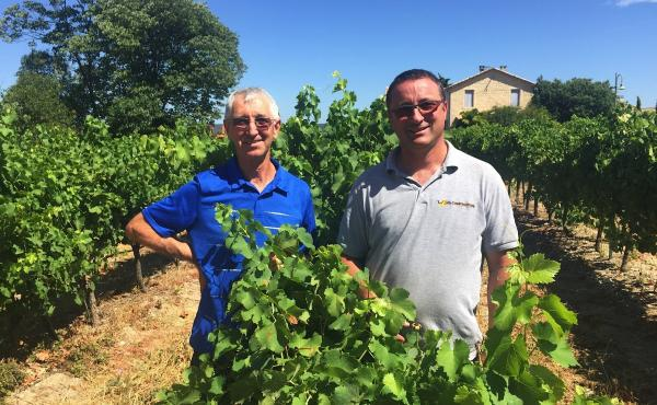 Robert Blanc (left) and his brother, Didier, stand in the middle of their vineyard, Domaine Saint Firmin, near the town of Uzes, in southern France. The area is known for its rosé wine in the summertime, and Robert Blanc says American importers have come