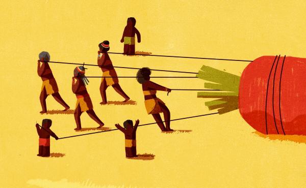 Promo wide version of Hadza grandmas illustration.