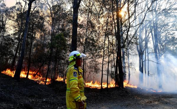 A firefighter monitors a fire on Saturday near Port Macquarie in New South Wales. Australia's most populous state has been subject to a large outbreak of wildfires because of drought conditions.