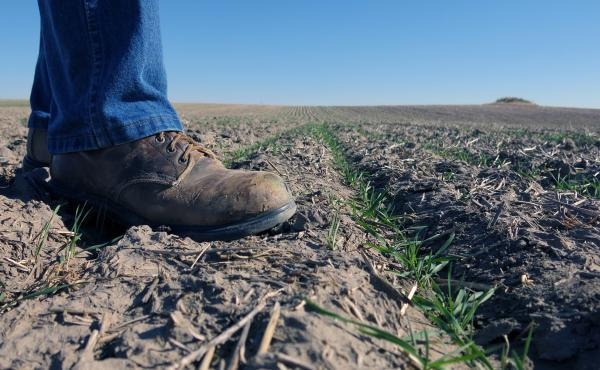 The Agriculture Department established research centers in 2014 to translate climate science into real-world ideas to help farmers and ranchers adapt to a hotter climate. But a tone of skepticism about climate change from the Trump administration has some