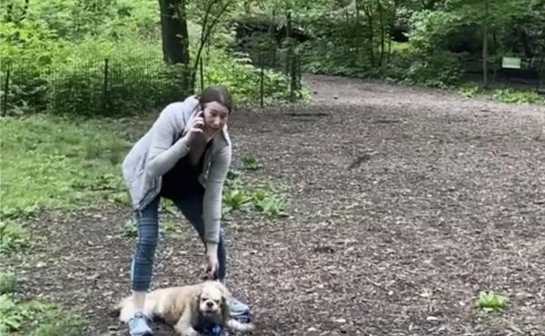 The Manhattan district attorney says he will prosecute Amy Cooper, who called police after a black man asked her to leash her dog in New York's Central Park.